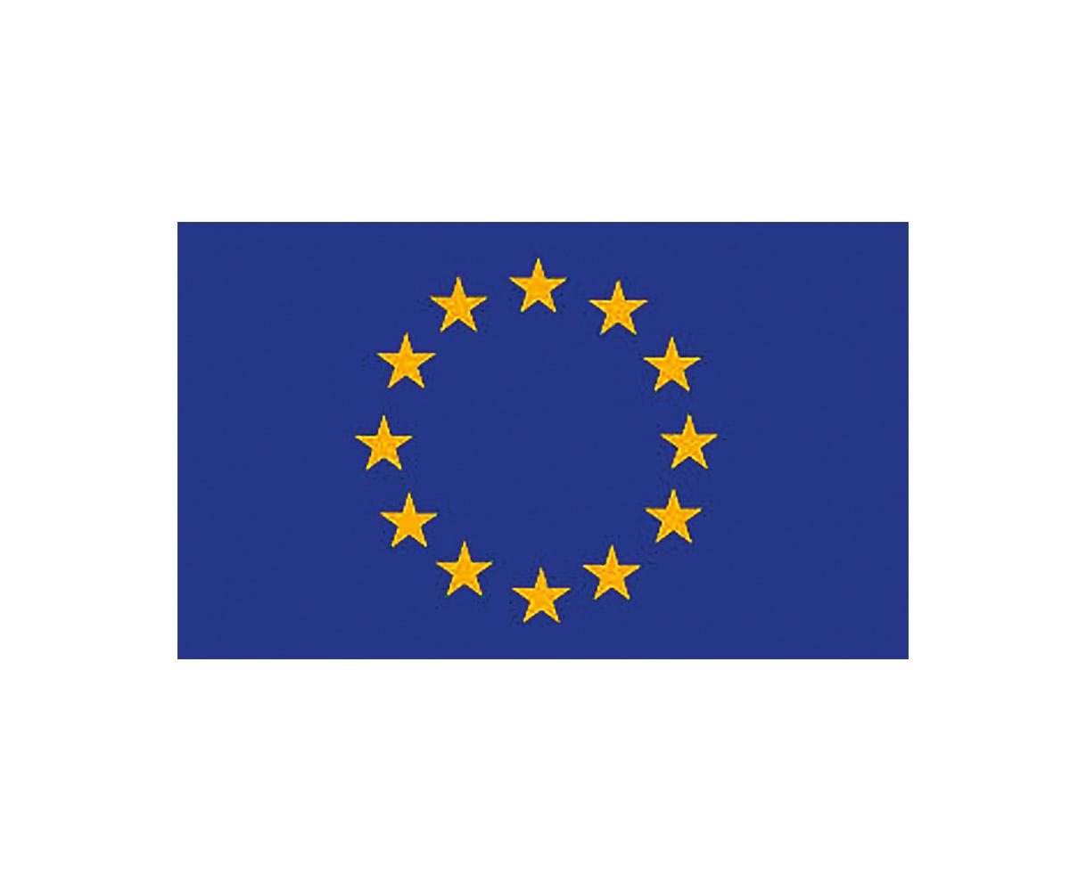 Fahne 90 x 150 cm EU